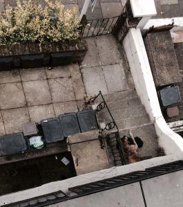 Tomada desde la ventana de mi casa